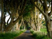 """Tourism Ireland adds scenes from """"Eastwatch"""" to its Game of Thrones tapestry"""