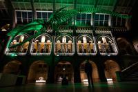 290 Iconic global landmarks go green for Saint Patrick's Day